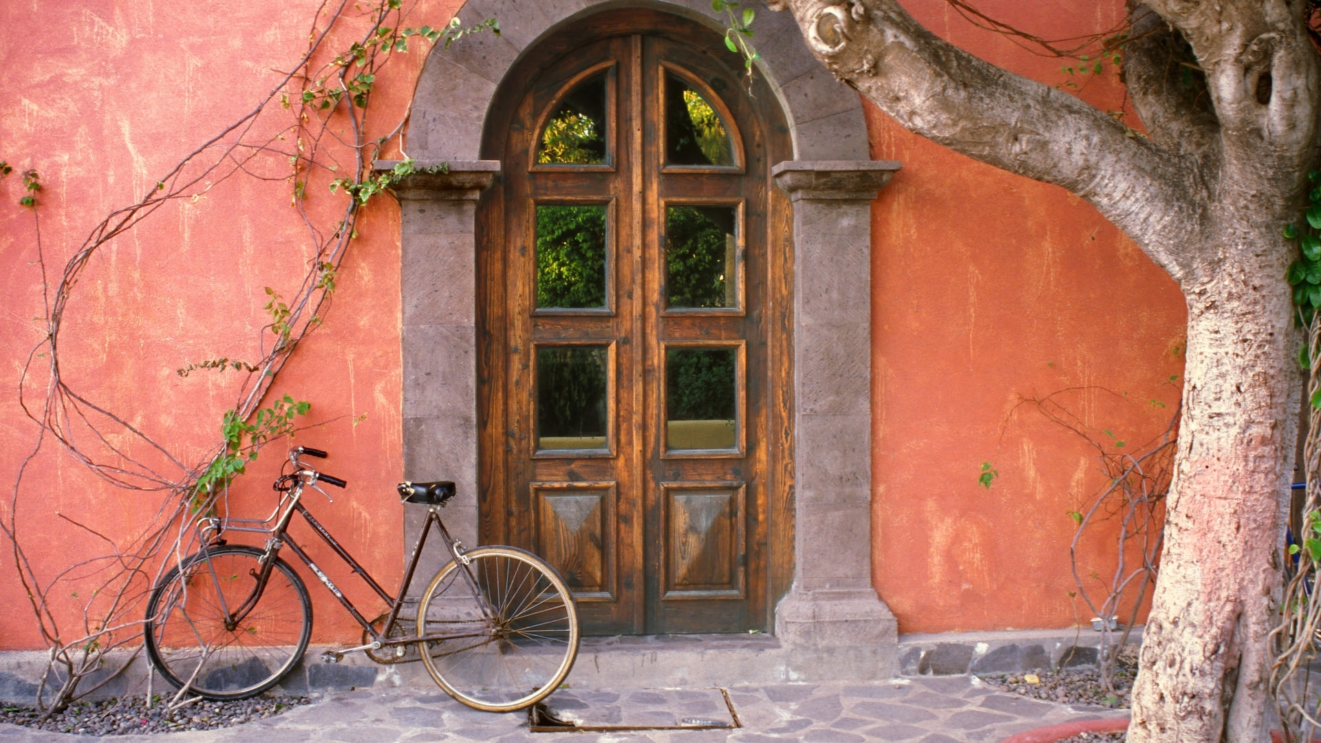 bicycle-against-wall